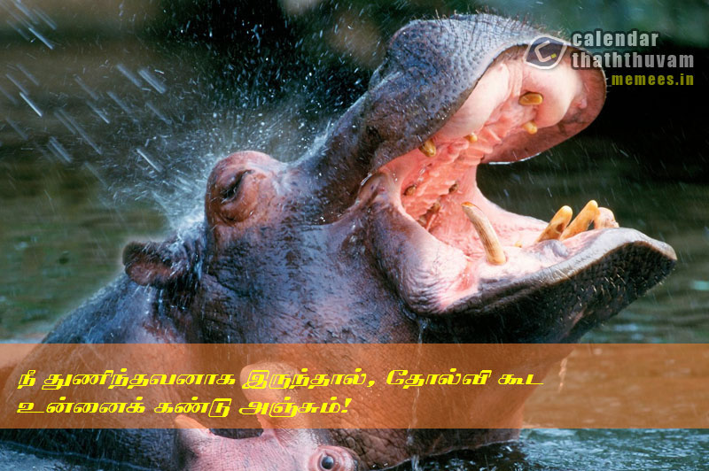 Hope Quotes in Tamil